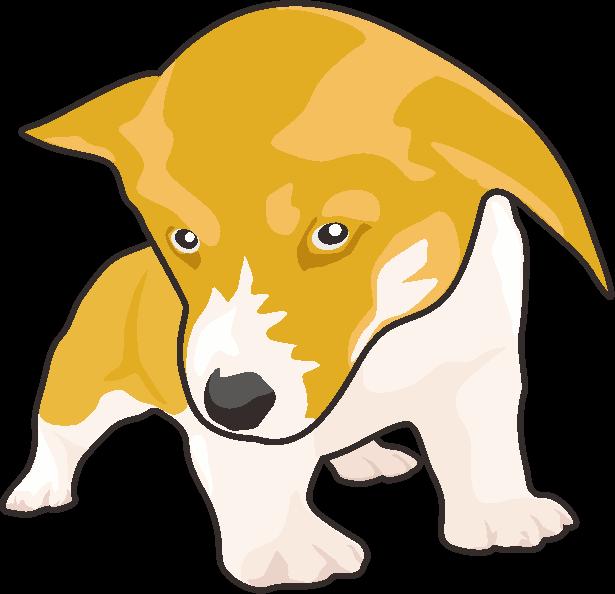 可愛いコーギーの子犬