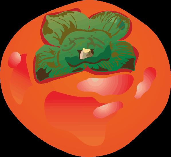 赤く熟した柿のイラスト