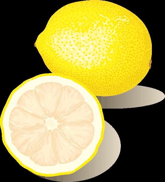 レモンとカットレモンのイラスト画像