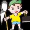 昆虫採集をしている男の子のイラスト