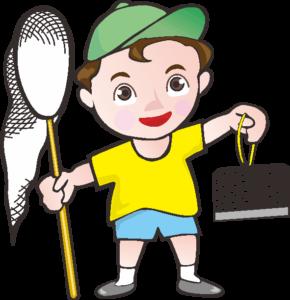 夏休みに昆虫採集する男の子
