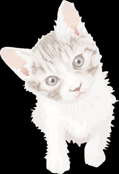鋭い目つきが可愛い子猫のイラスト