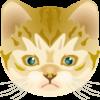 凛々しい顔つきの子猫のイラスト