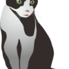 緑色の目をしたメスの白黒猫のイラスト