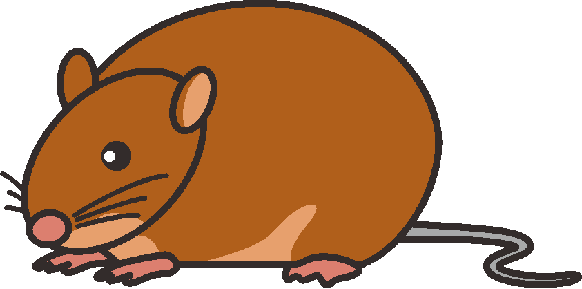 じっと様子をうかがっているネズミのイラスト