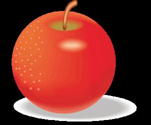 正円形のリンゴのイラスト画像