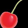 赤く売れたサクランボのイラスト
