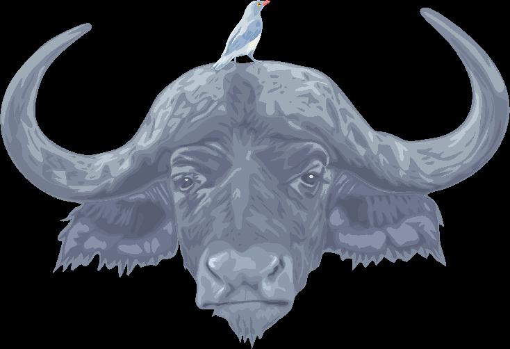 頭に小鳥を乗せた水牛のイラスト