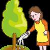 お米のとぎ汁を庭木の根元に注いでいる賢い主婦のイラスト