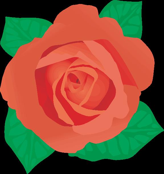 赤いバラの花のイラスト