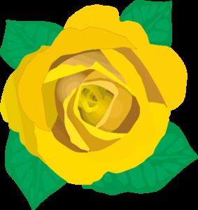 父の日にプレゼントする黄色いバラ