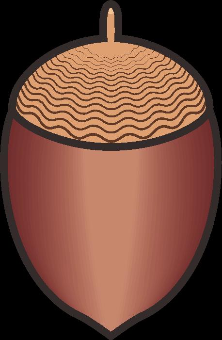 ドングリの簡単なイラスト