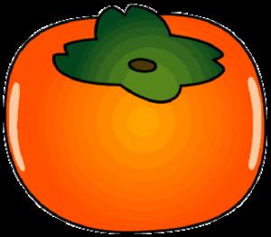 簡略な描き方の柿のイラスト画像