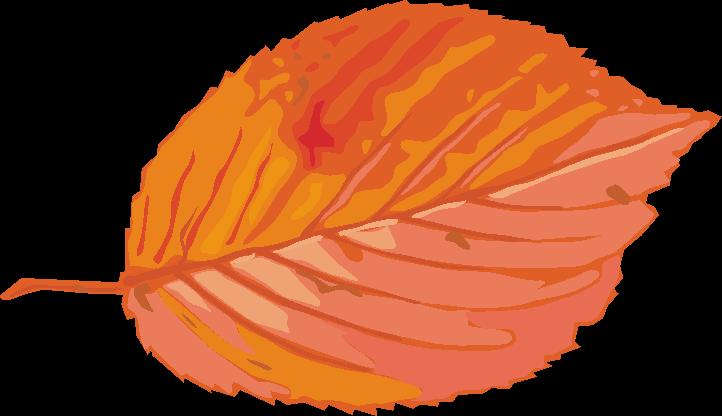 紅葉の落葉のイラスト