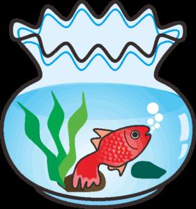 丸い金魚鉢のなかの金魚