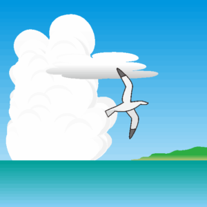夏雲と岬とカモメ