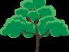 簡単な木のイラスト