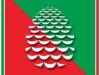 クリスマスオーナメントのマツカサのアイコン画像