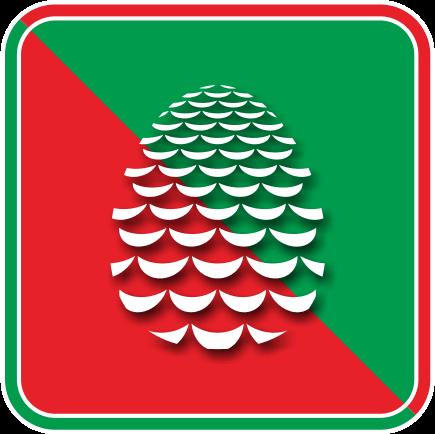 クリスマスオーナメントの松笠のアイコン画像