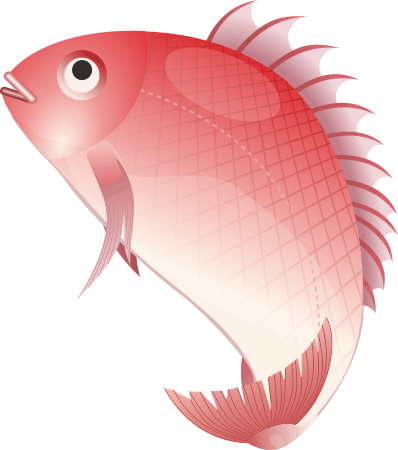 正月のめでたい縁起物である鯛のイラスト