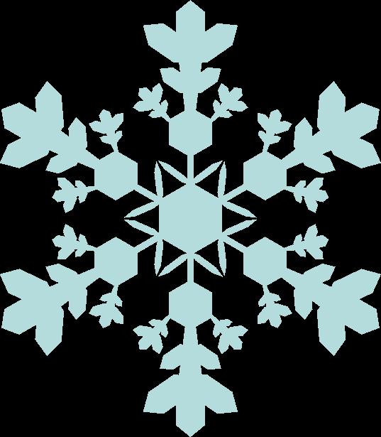 花穂状結晶という雪の結晶のイラスト