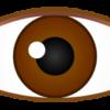 正面を見ている目のワンポイントイラスト