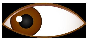 左側を見ている目のワンポイントイラスト