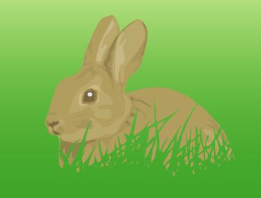 草むらに身を潜めている野ウサギのイラスト